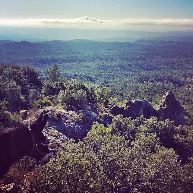 #bessillon #cotignac #hiking #donkey @maisonlambot