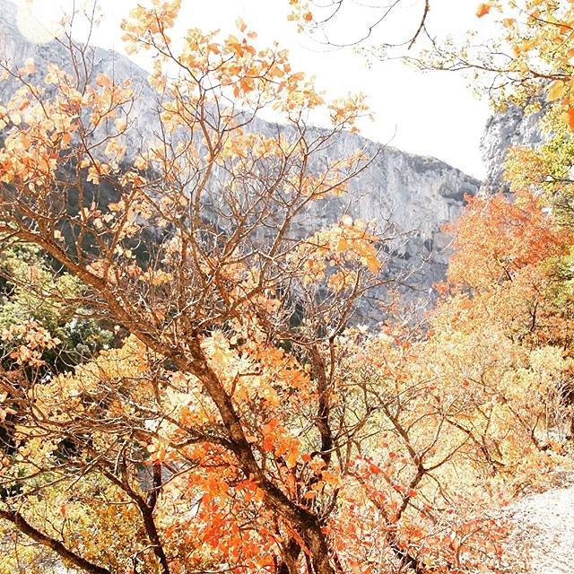 Bright colours in the #gorgesduverdon