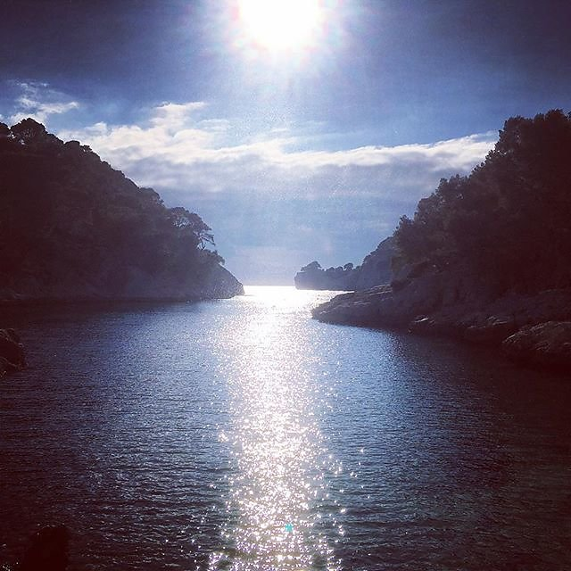 Calanque de Port-Pin January #marseille #provence #nationalpark #pleinairpainting