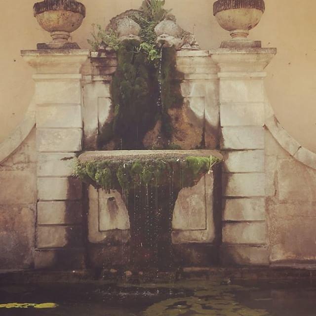 #fountain #cotignac #provenceverte #mossy